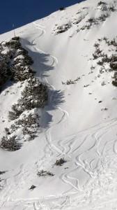 trace-noel-nordpark